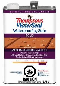 Thompson's WaterSeal WP Stain SOLID - Woodland Cedar The