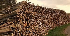 Bois De Chauffage 35 : bois de chauffage ilian moi meaux 77100 ~ Dallasstarsshop.com Idées de Décoration