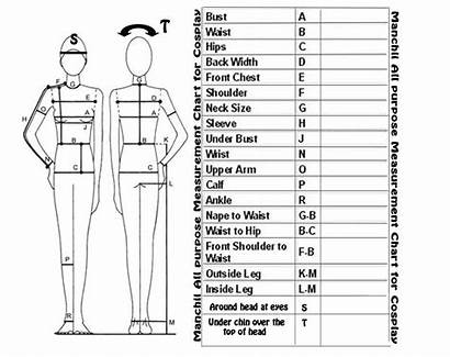 Chart Measurment Costumes Sewing Deviantart Measurement Patterns