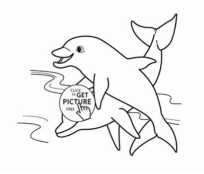 Coloring Pages Animal Dolphins Sea Animals Dolphin