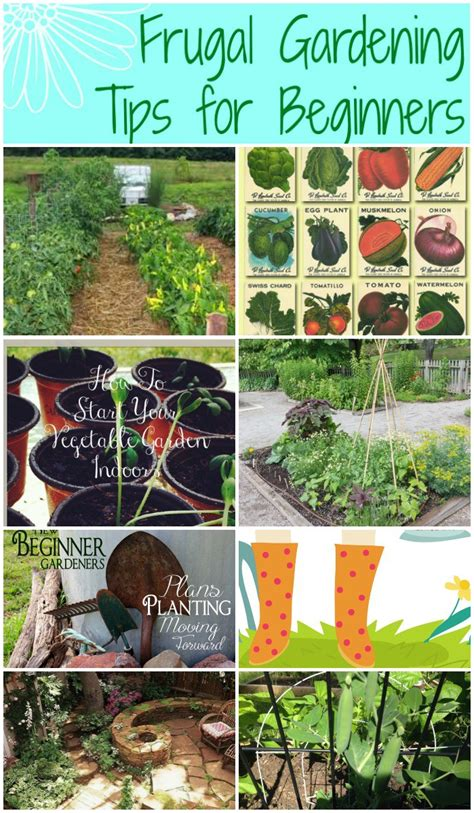 Frugal Gardening Tips For Beginners