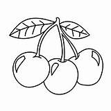Cherries Coloring Pages Fruit Cherry Fruits Printable Stencil Three Games Embroidery Momjunction Stencils Para Coloringonly Sheets Coloringgames Spirit sketch template