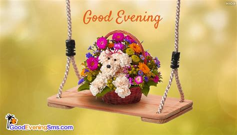 good evening sms images  teddy bear
