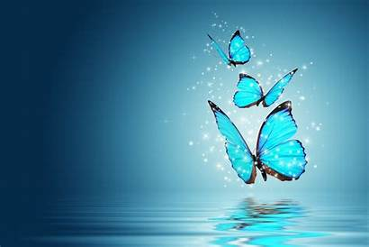 Screen Wallpapers Background Butterfly Magic Widescreen Cool