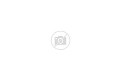 Washington Dc Icon Landmark President Residence States
