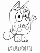 Coloring Heeler Muffin Printable Bluey Coloringonly Template sketch template