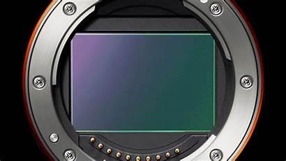 Camera Sensor Bridge Shutter Electronic Cameras Otturatore