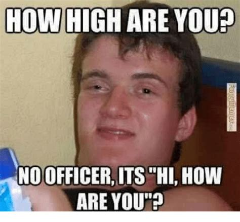 Hi Meme - how high are you nodofficerits hi how are you how high meme on sizzle