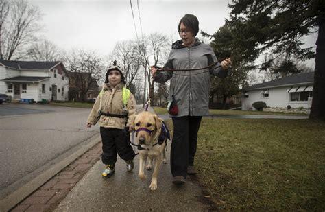 boy  autism   dog  patience   service