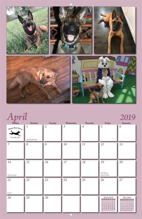 malinois ranch rescue calendar yearbox calendars