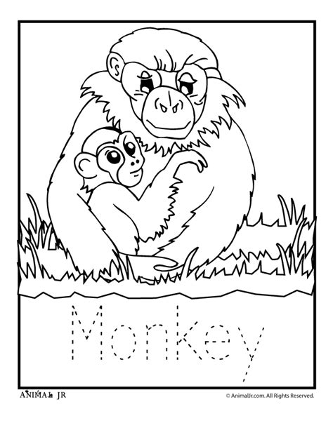 zoo animal coloring pages baby monkey woo jr kids