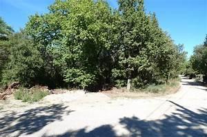 Terrain boisé à vendre à Régusse, Haut Var Achat terrain à Régusse