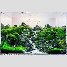 Awesome Scape