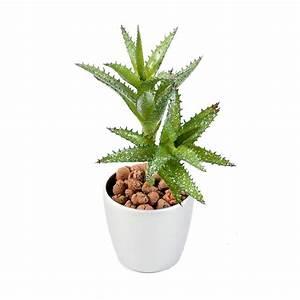 Plante Grasse Artificielle : mini succulentes artificielles 18 cm mini cactus et ~ Teatrodelosmanantiales.com Idées de Décoration