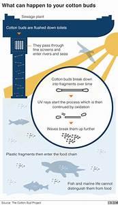 Seven Charts That Explain The Plastic Pollution Problem  U2013 Bbc News  U2013 Phoebe Kent