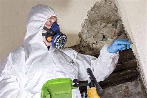 asbestos management plan   review