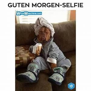 Lustige Guten Morgen Kaffee Bilder : die lustigsten top 10 guten morgen bilder ~ Frokenaadalensverden.com Haus und Dekorationen