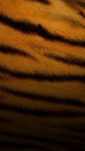 Tiger Skin Pattern Android Wallpaper free download