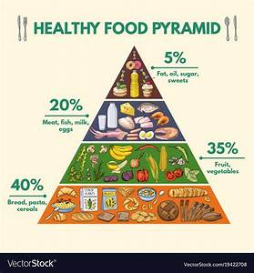 Healthy Food Pyramid Infographic Pictures With Vector Image On