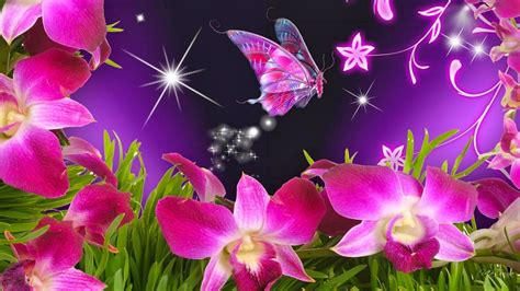 Animated Flowers Wallpapers Free - wallpaper flowers and butterflies beautiful flowers and