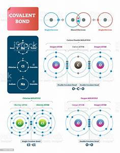 Covalent Bond Vector Illustration Explanation And Example