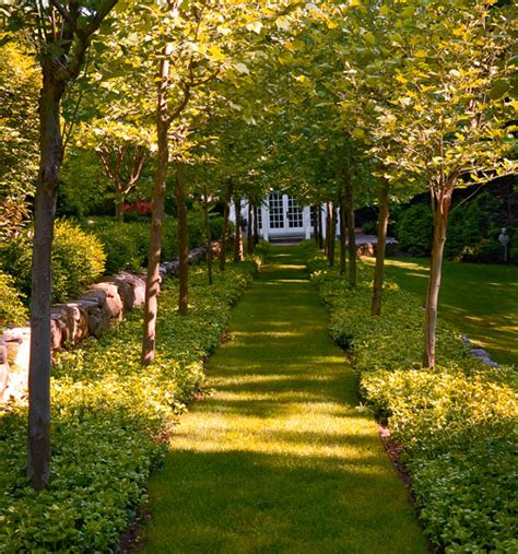 magnificent garden formal yet inviting traditional home