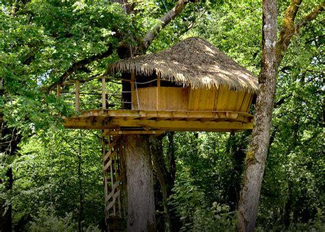 chambre dans les arbres découvrez nos différentes cabanes franche comté
