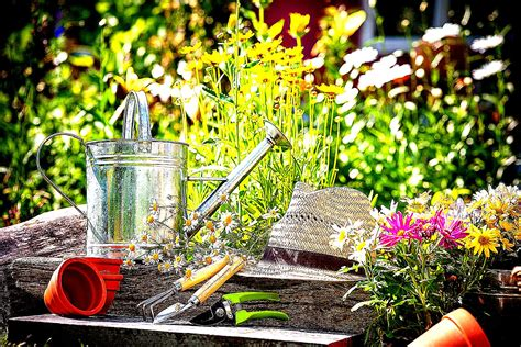 the of gardening get a quote mgo handyman garden services