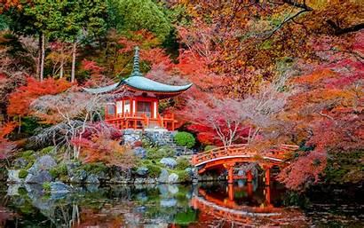 Japan Kyoto Autumn Nature Pond Bridges Desktop