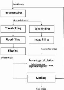 Flow Diagram Of The Image Processing And Analysis