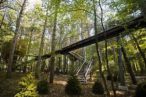 Costco Hiring Longest Canopy Walk In The U S Opens This October In