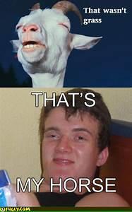 Stoned Meme | www.imgkid.com - The Image Kid Has It!