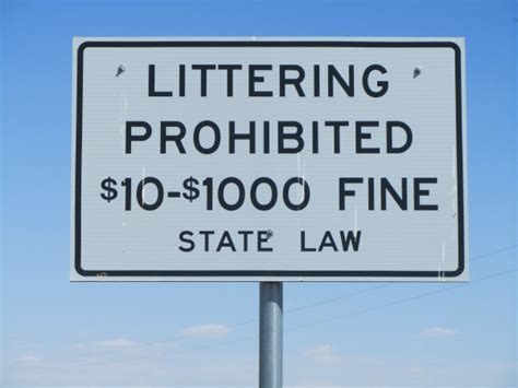 Littering Fines Higher Than Texting And Driving Fines. Send Money To Usa Online What Is Forex Broker. Harvard Vanguard Peabody Pediatrics. Aladdin Bail Bonds Seattle Low Cost Web Host. Atypical Teratoid Rhabdoid Tumor. Are Ford Mustangs Reliable Cars. Evolution Physical Therapy Nyc. Best Pay Per Click Management Company. Survival Of Stage 3 Breast Cancer