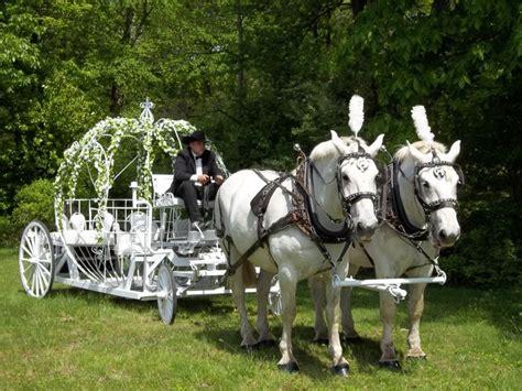 elles wedding board         pumpkin carriage lori cole