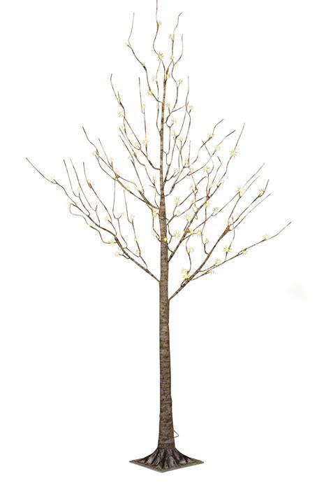 led birch tree ft
