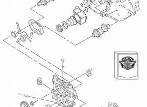 Wiring Diagram Database  Harley Twin Cam Oil Flow Diagram