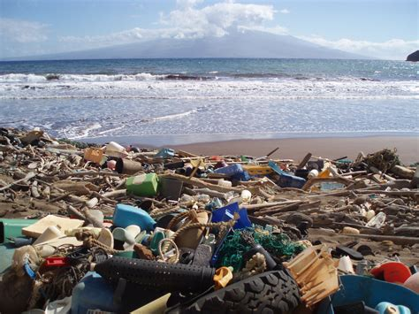 Marine debris laden beach in Hawaii | Kanapou Bay, on the ...