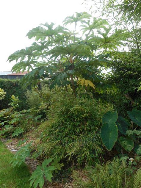 Le Jardin D'olivierd En Belgique