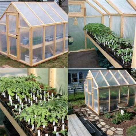 build  simple greenhouse   backyard