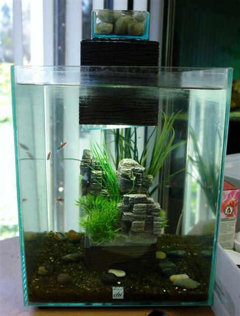 fluval tanks simple fluval chi tank vivariums and terrariums