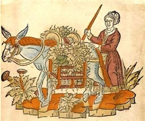 mercato alimentare la treccola mercato alimentare