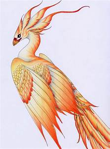 Firebird by verreaux on DeviantArt