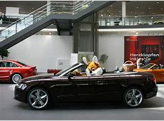 Easter Bunny Visits the Audi Forum, Delivers Eggs in