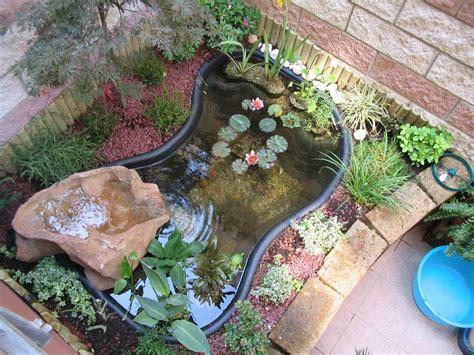 pesci da laghetto giardino come costruire un laghetto per pesci missionmeltdown
