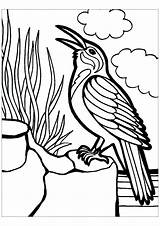 Birds Coloring Pages Children Animals Printable Justcolor sketch template