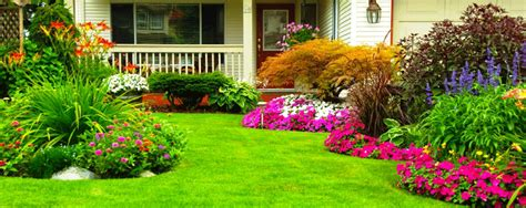 beautiful yards ideas for small yards on a budget