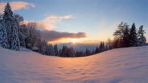 Winter, snow, sun, light, forest, trees, sunset wallpaper ...