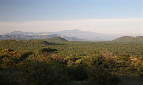 samburu national reserve kenya bench africa