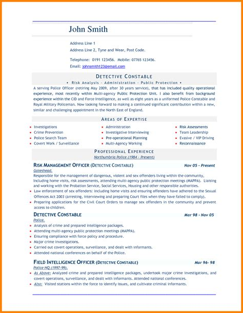 Professional Cv Format Word Document by 8 Cv In Word Document Theorynpractice