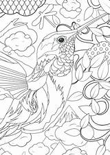 Complex Coloring Pages Animal Complicated Printable Getcolorings sketch template